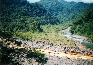 Confluencia Río Sucio/Hondura