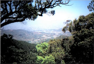 Vista desde Jericó